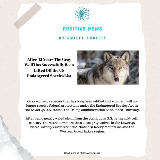 positive-news3